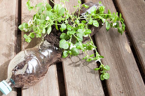 Blumentopf upcycling DIY