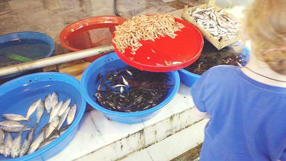 Istanbul mit Kind - Essen in Istanbul - Mais