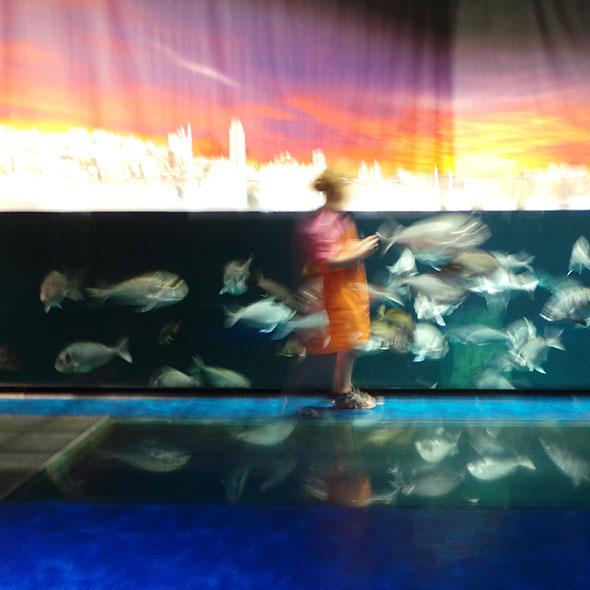 Istanbul mit Kind - Aquarium