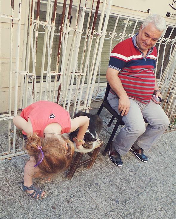 Istanbul mit Kind - Katzen überall