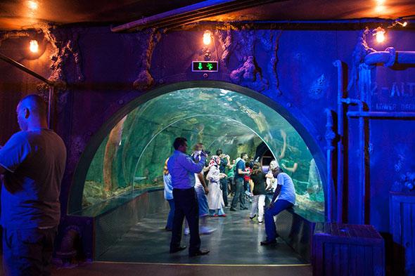 Istanbul mit Kind - Aquarium Istanbul Tunnel