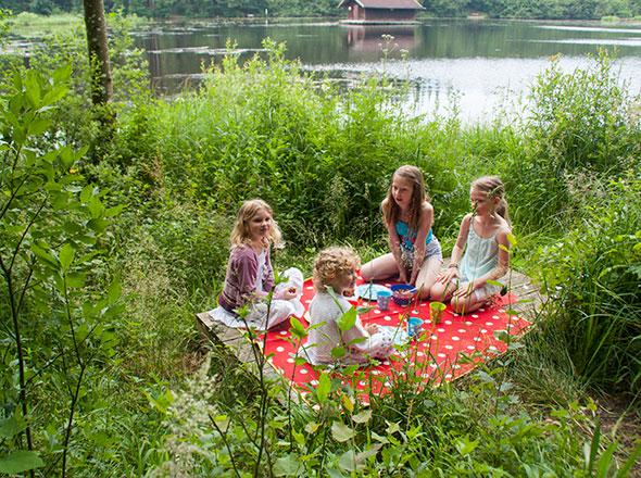 Picknick am See - vier Mädchen auf der Picknickdecke