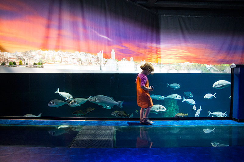 aquarium Istanbul mit Kind