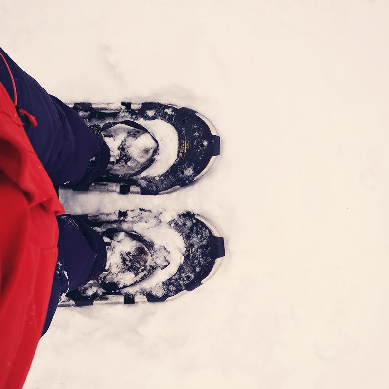 Schneeschuhwandern Tirol mit Familie