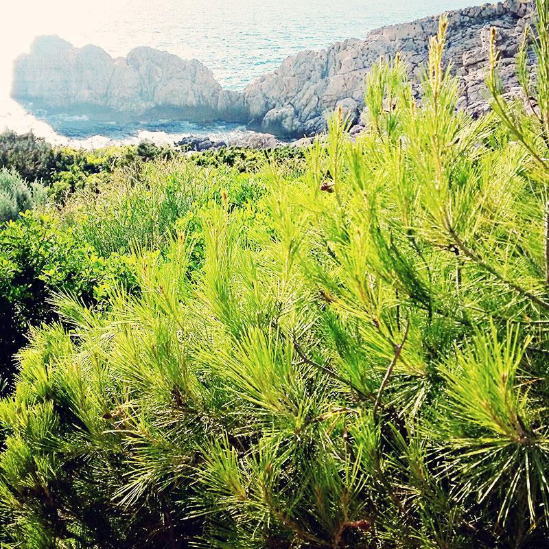 Capri Natur