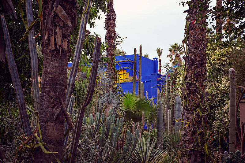 wochenende marrakesch jardin majorelle
