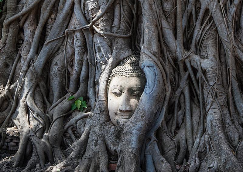 Ayutthaya thailand roadtrip