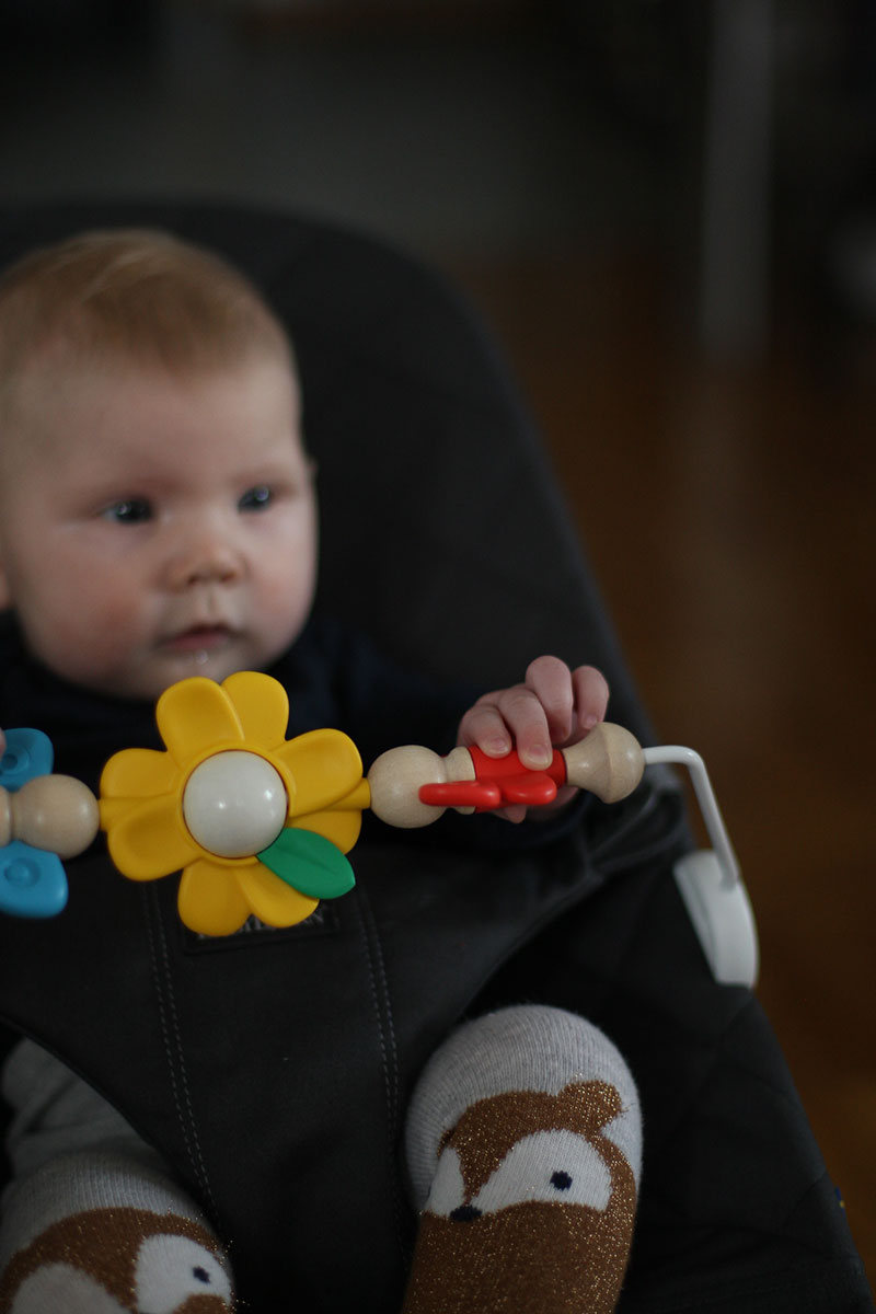babybjorn wippe bliss